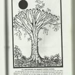 Arboricultura Moderna Compendio, Shigo Alex.L .,1994