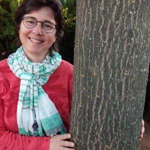 www.arbres.cat